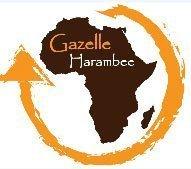 Association Gazelle Harambee